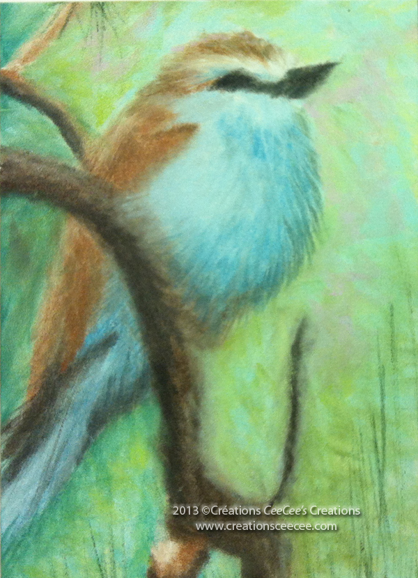 Panpastel bird CC copy