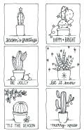 Cactus minis